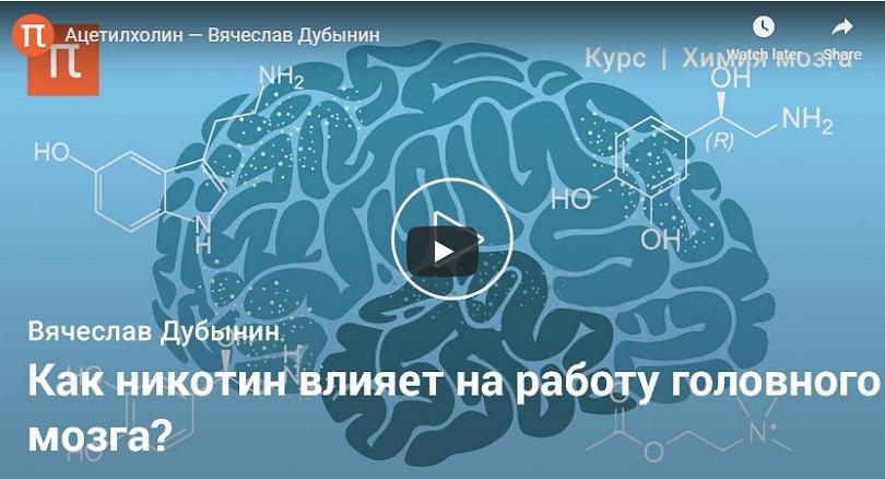 Как никотин влияет на работу головного мозга