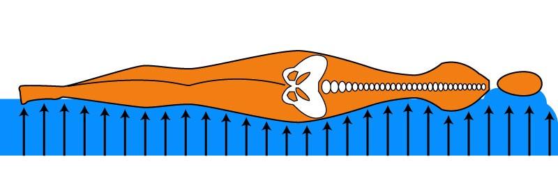 Ортопедический матрас и функциональная интеграция. Польза от ортопедического матраса в положении лежа на боку